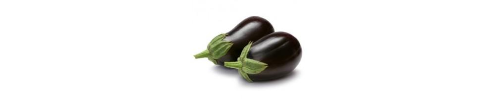 Семена баклажанов